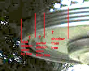 shadow&treeObscuration
